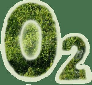 O2 Oxygen molecule